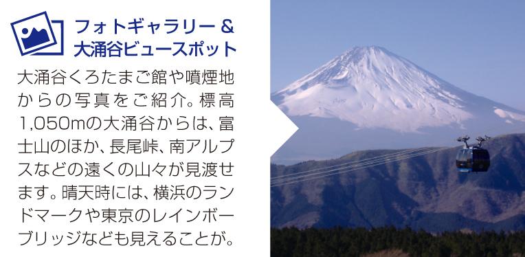 フォトギャラリー&大涌谷ビュースポット